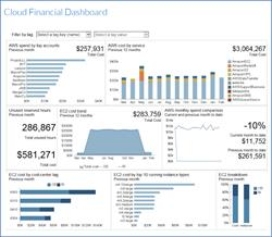 FlexNet Manager for Cloud Infrastructure - Dashboard