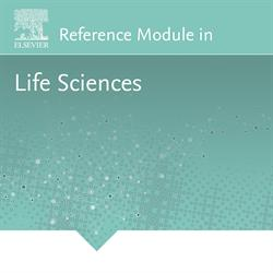 Elsevier, life sciences, biology, biochemistry, biotechnology, immunology, Reference Modules