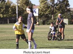 Lion's Heart photo 2