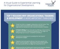 Visual Guide to Experiential Learning for Organizational Development