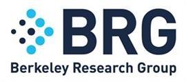 Berkeley Research Group