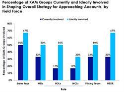 Pharma KAM Groups Involved in Strategic Planning