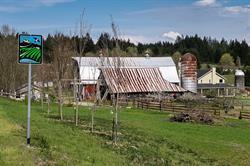 Scenic Road Trip, Washington Farms, Agritourism