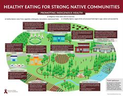 Infographic: American Indian Cancer Foundation
