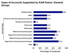 General Groups & Types of Accounts Backed by KAM Teams