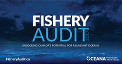 Fishery Audit cover