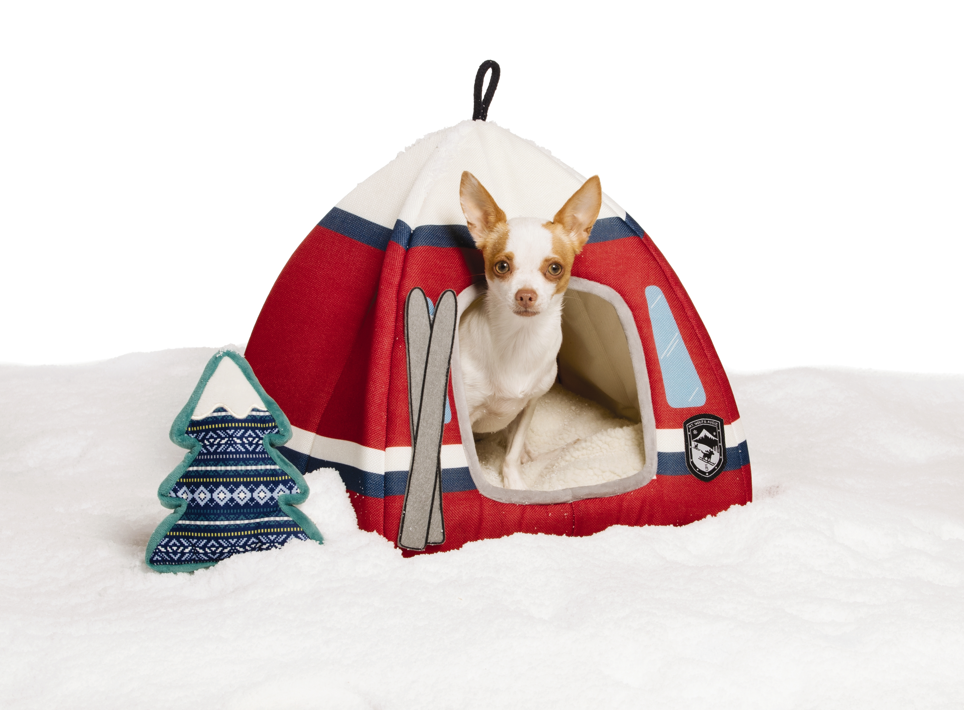 Petsmartr Launches The Ed Ellen Degeneres Winter Collection For Pets