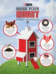 Eggs and beyond: Raising chickens has many benefits for a family.