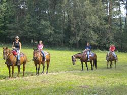 Horseback riding at a Michigan Association of Recreation Vehicles and Campgrounds (MARVAC) member like Double RR in Belding, Michigan is just one great way to keep active and burn calories while on enjoying a fun, family camping vacation!
