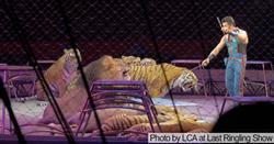 Photo by Last Chance for Animals at final Ringling Bros. and Barnum & Bailey circus performance.