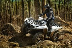 2018 Yamaha Grizzly